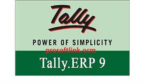 Tally ERP 9 Crack Release 6.5.5 With Serial Key Full Version Download [2020]